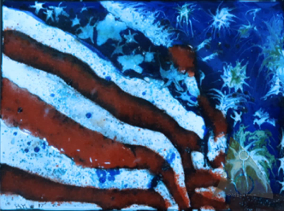 American Flag Glass Fusion