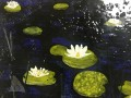 Glass Fusion Waterlilies